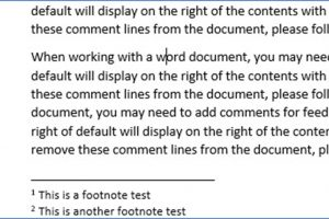 How to Enter a Footnote or EndNote in Word