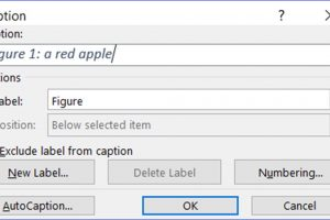 How to Insert Caption for an Image or Table in Word