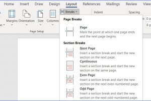 How to Insert a New Section in Word