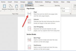 How to Insert or Remove a Page Break in Word
