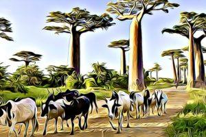 Working Days in Madagascar in 2022