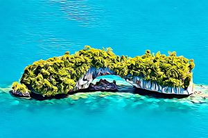 Senior Citizens Day (Palau)